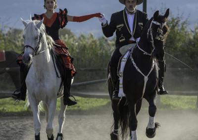 Spettacoli equestri #1