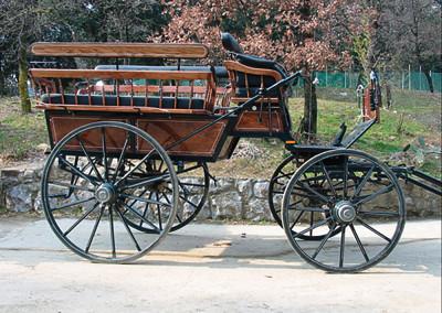 Wagonet