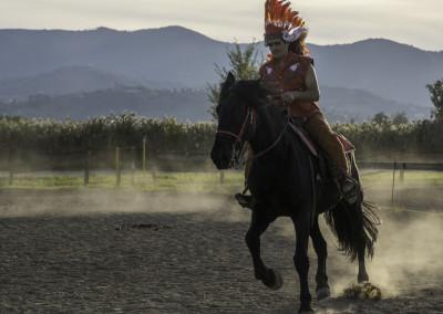 Spettacoli equestri #3